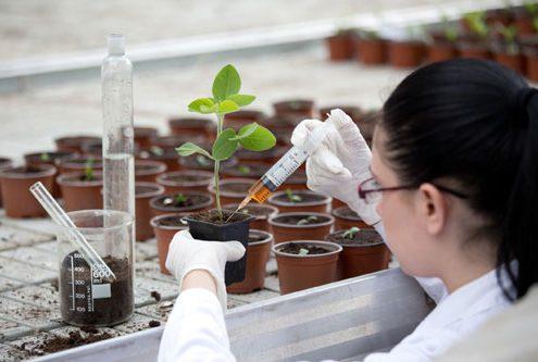 soil-scientist-500