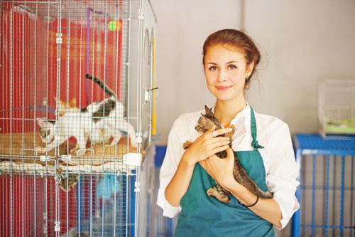 animal-care-500